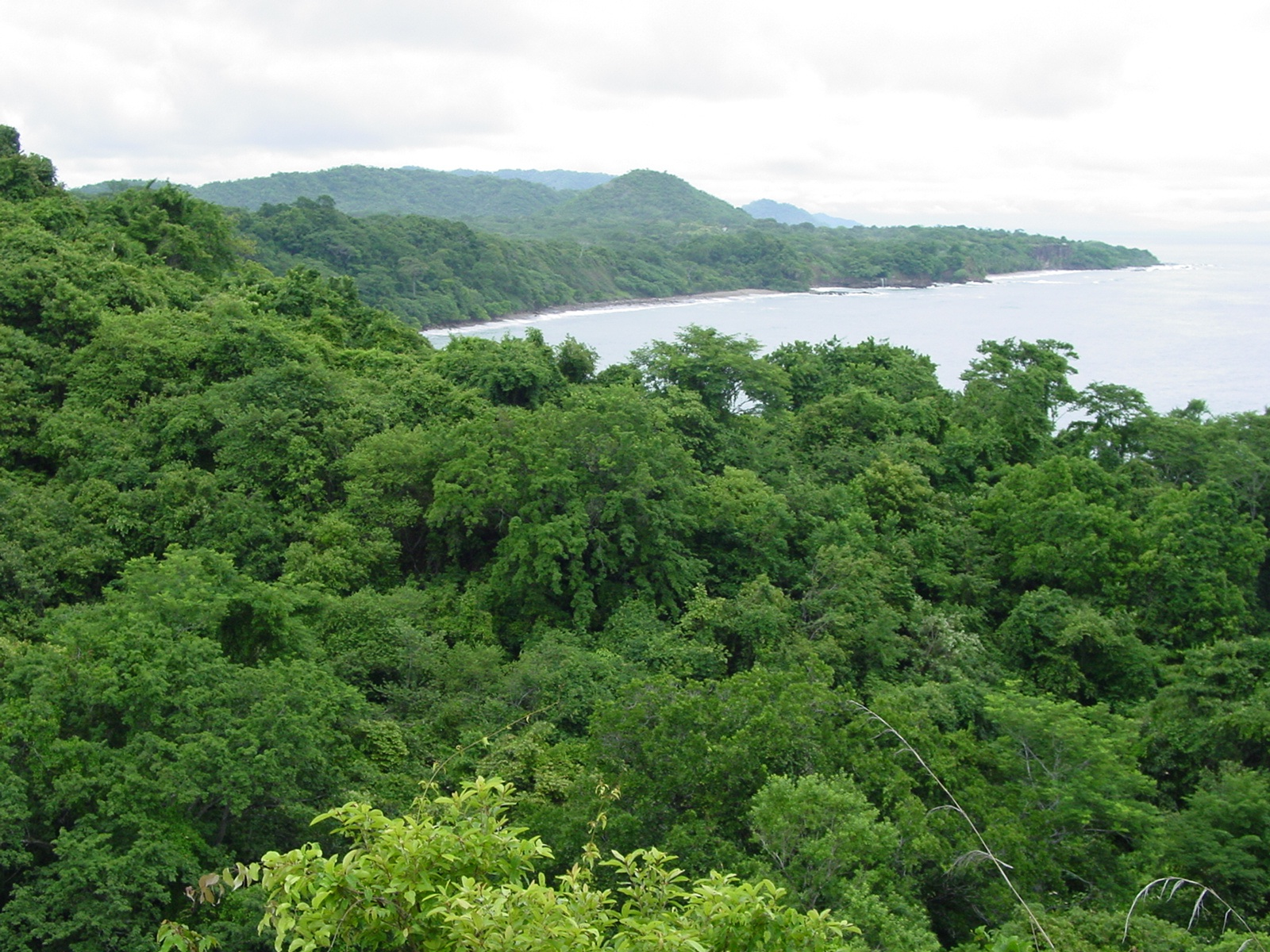 Puntarenas, Provincia de Puntarenas, Costa Rica